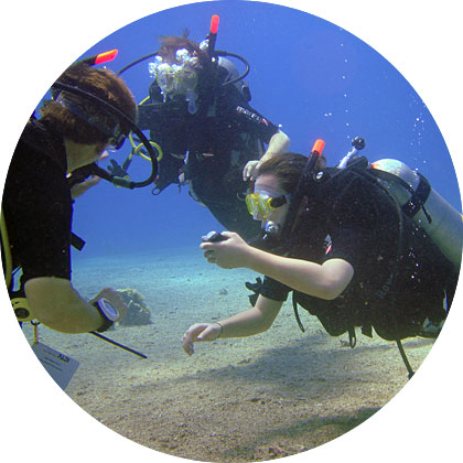 Shulamit's Eilat Diving Adventures - PADI diving courses and